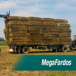 MegaFardos